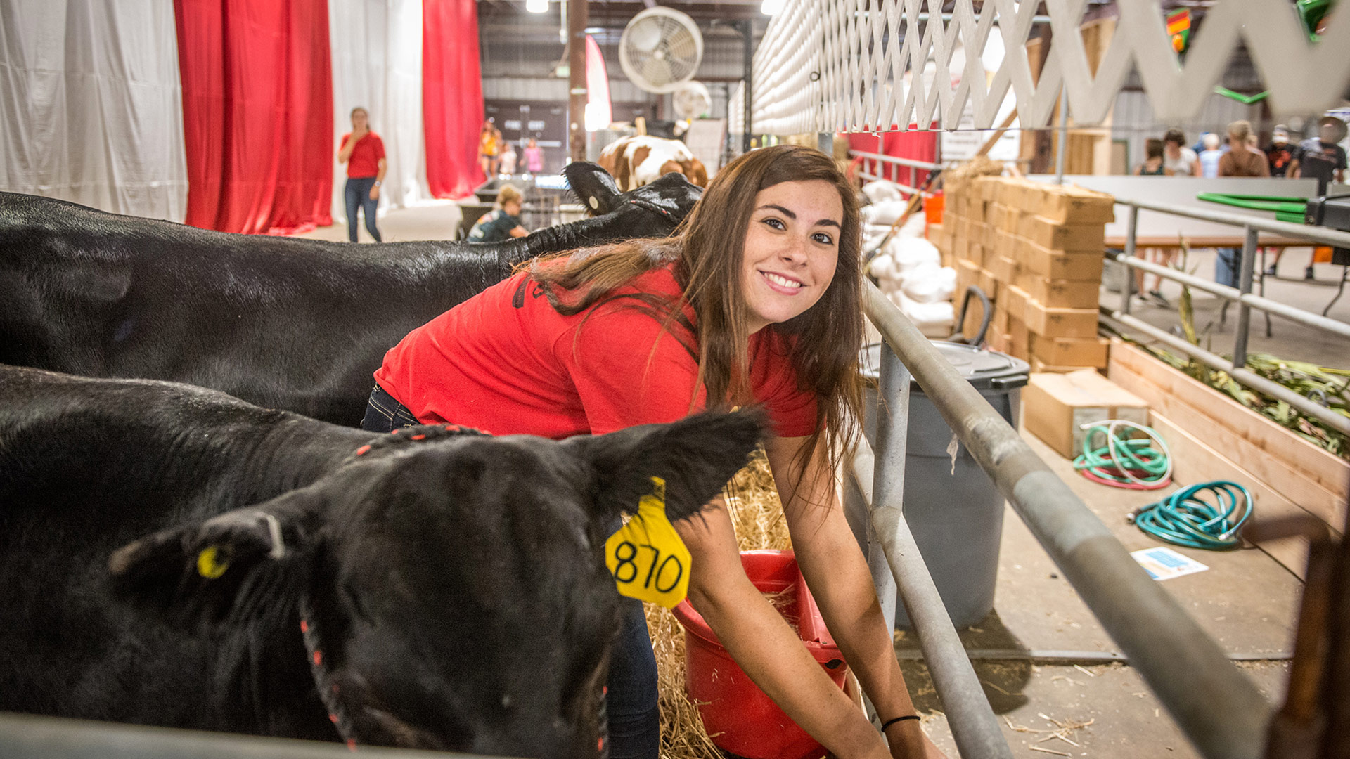 Agriculture Student with UMD Cows