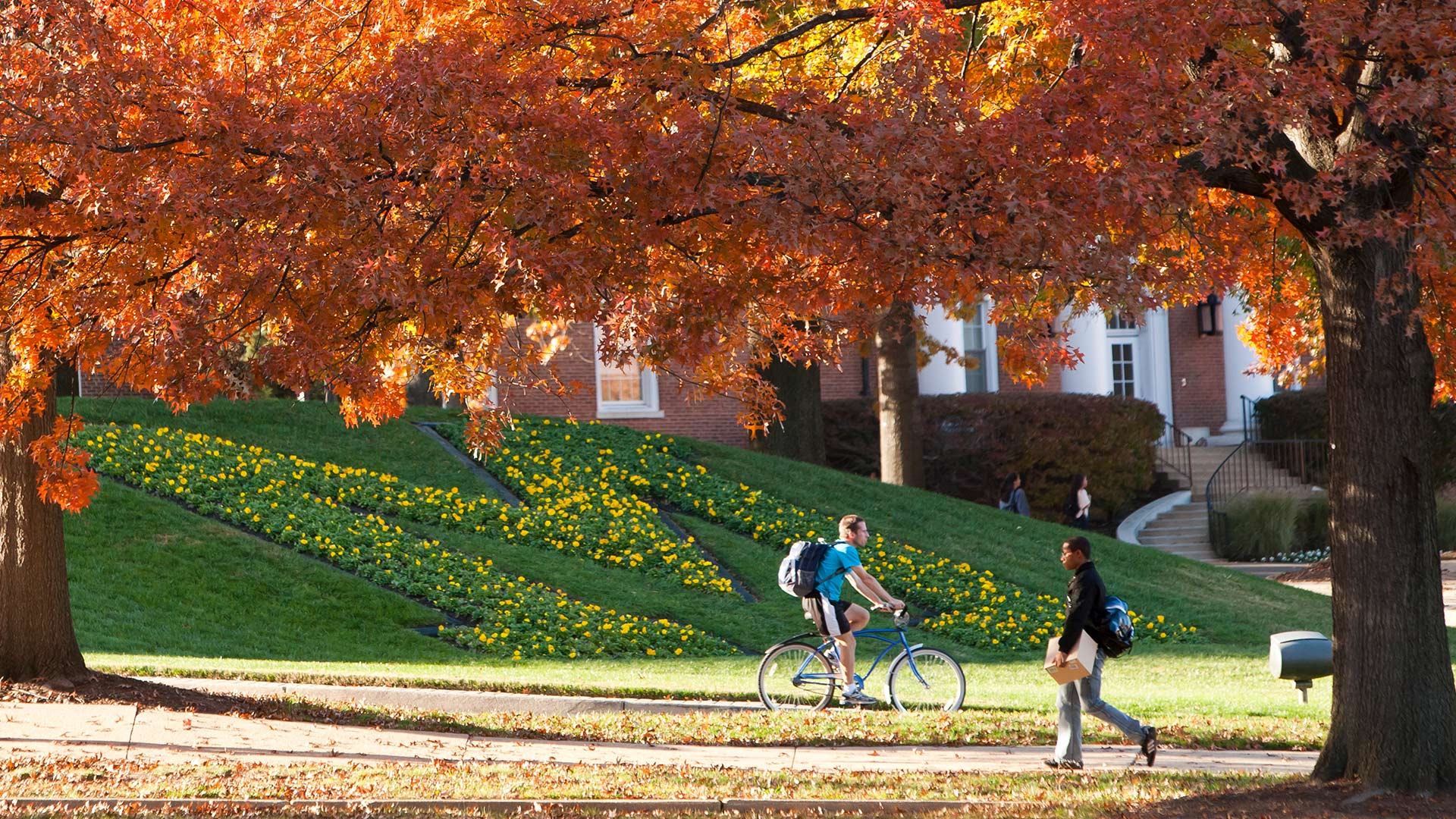 UMD Was Ranked No. 50 Among 1,250 Universities in the World