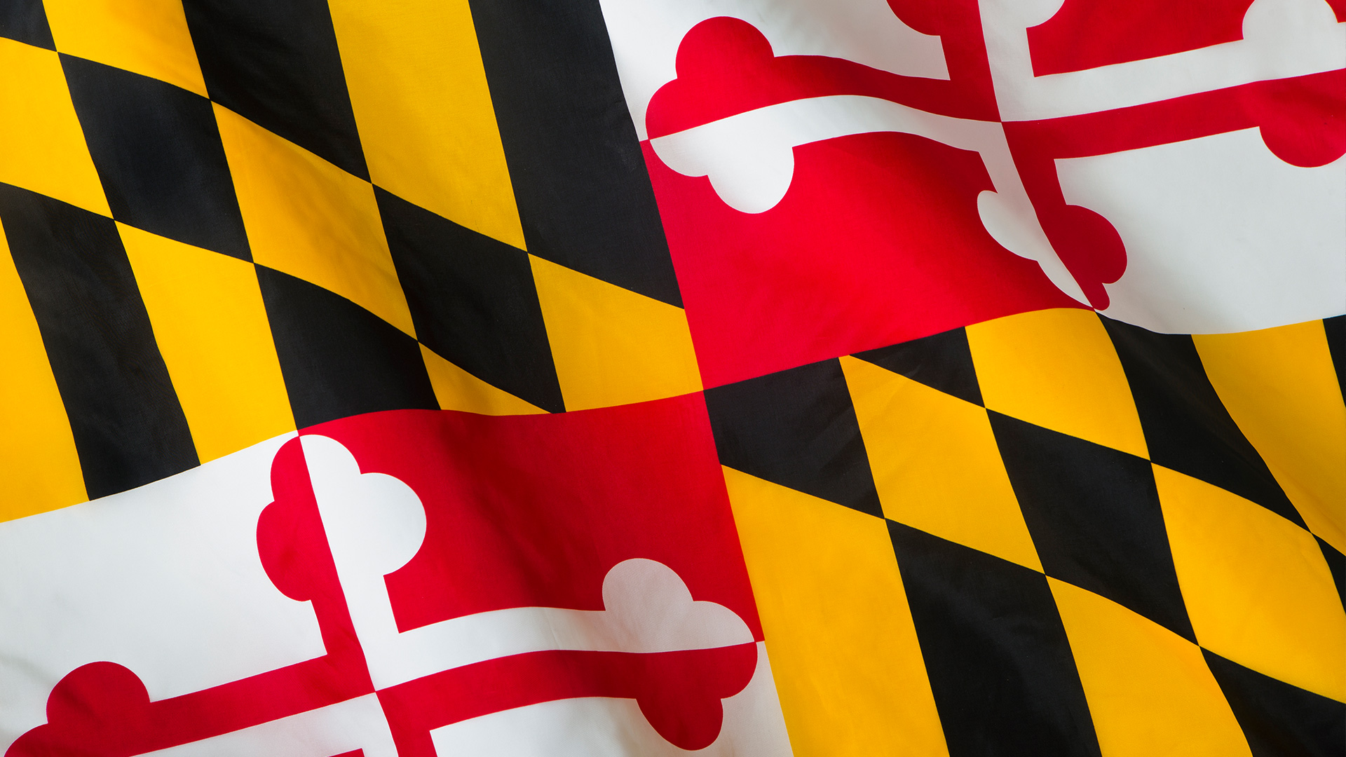 University of Maryland Strategic Partnership Advances Interdisciplinary Research