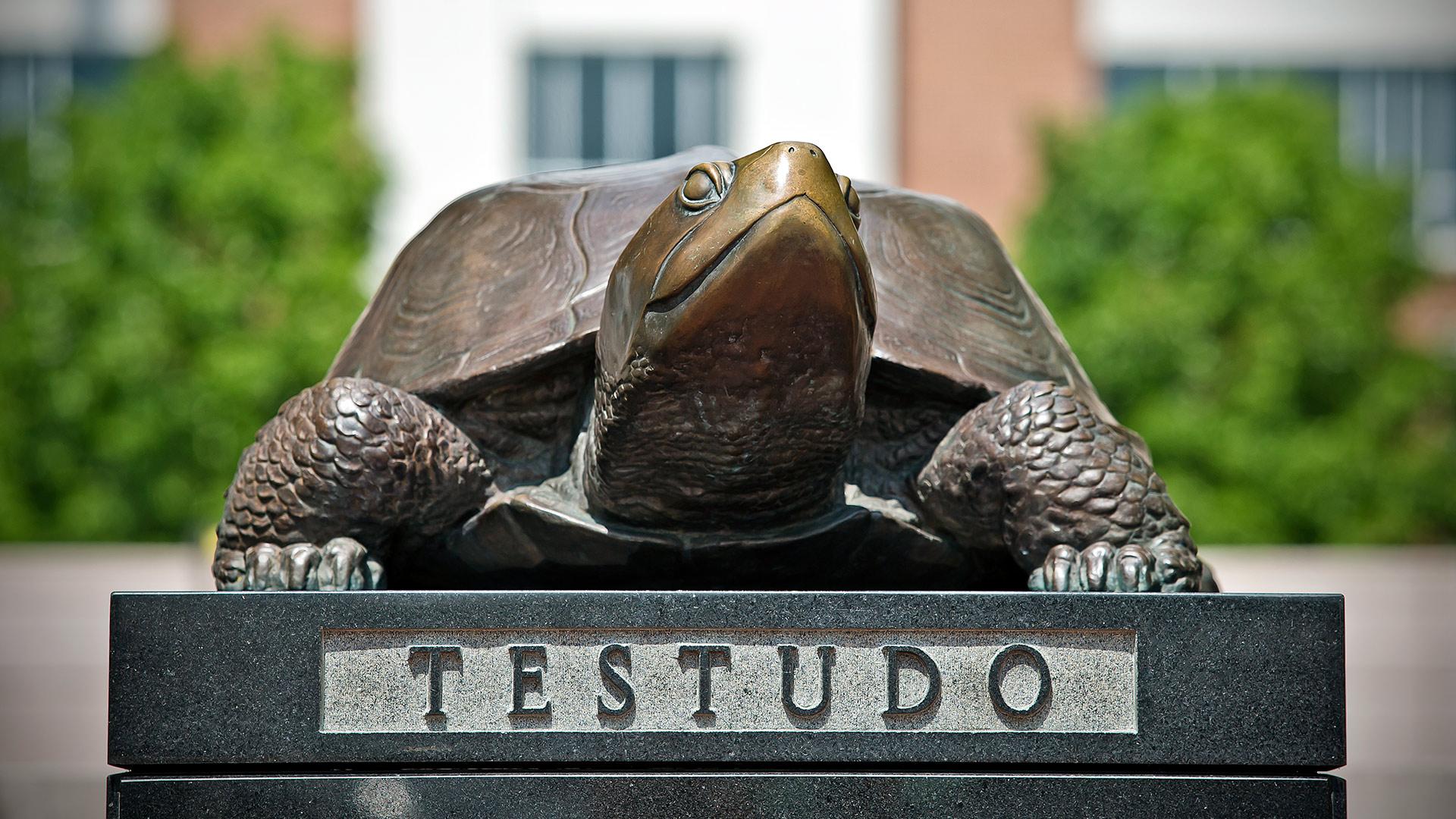 Testudo Sculpture